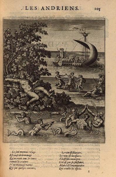 Fig-7-Andriens-crop